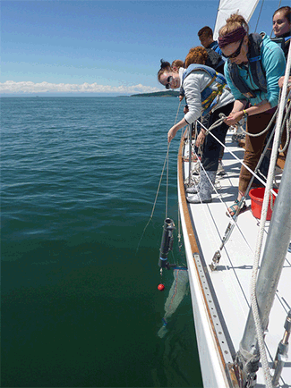 SOUND Program: 1-Day Expedition | Salish Sea Expeditions