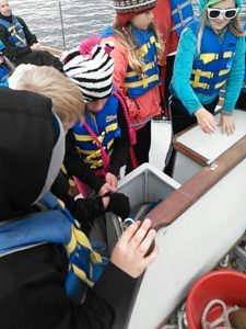 Students explore the science deckboxes