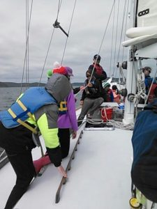 Working lines for hoisting sails